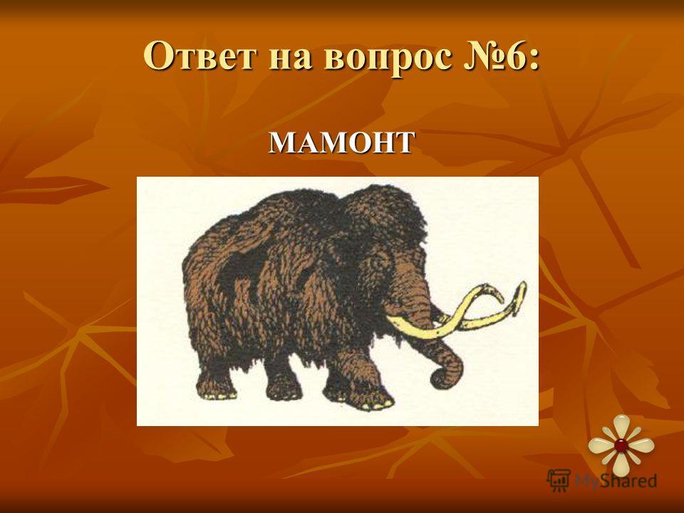 Ответ на вопрос 6: МАМОНТ