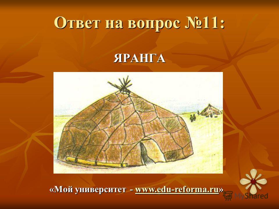 Ответ на вопрос 11: ЯРАНГА «Мой университет - www.edu-reforma.ru» www.edu-reforma.ruwww.edu-reforma.ru
