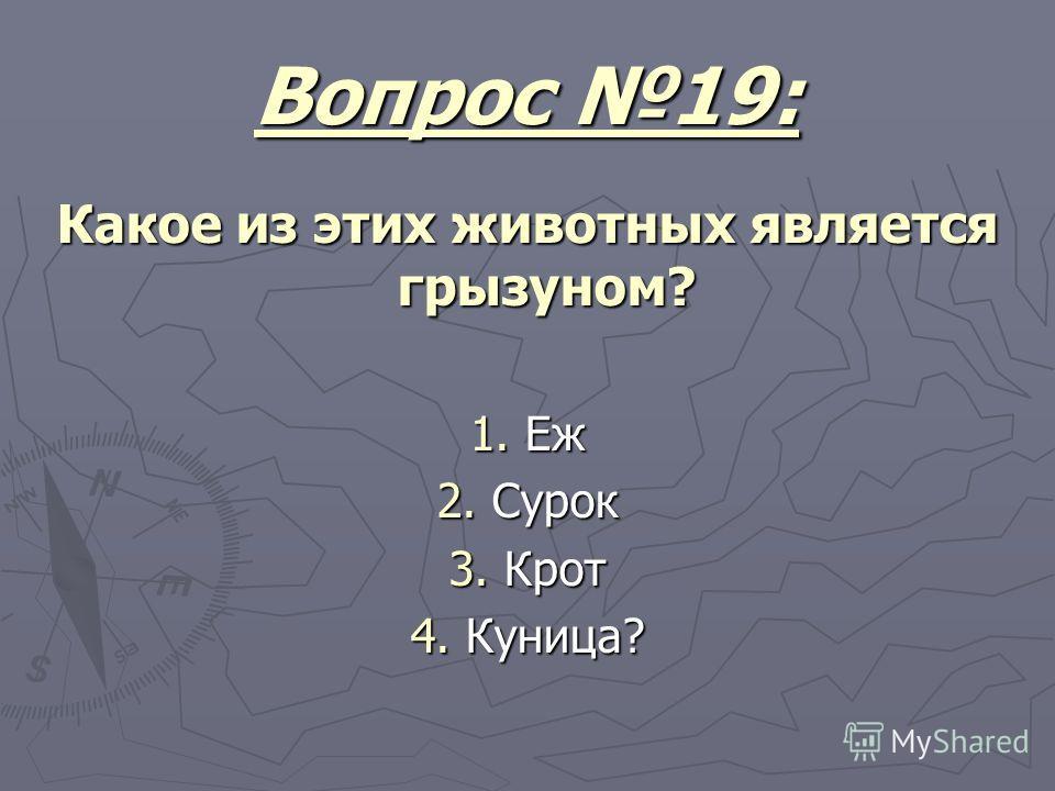 Вопрос 19: Какое из этих животных является грызуном? 1. Еж 2. Сурок 3. Крот 4. Куница?