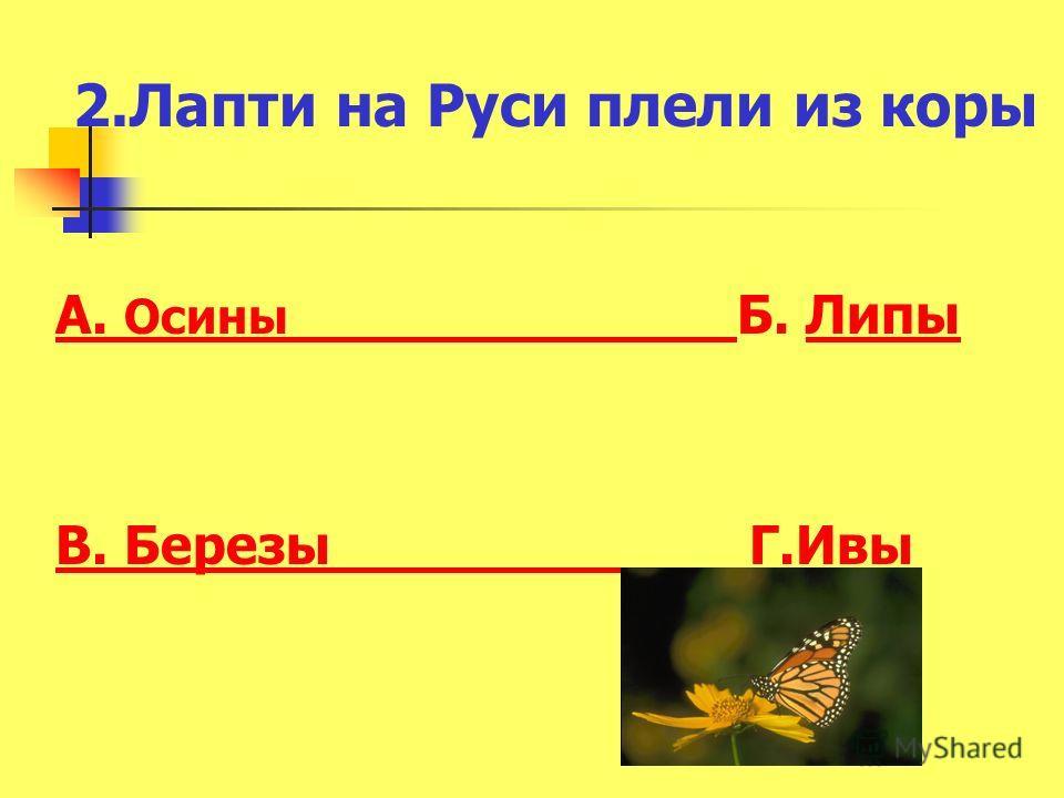 2.Лапти на Руси плели из коры А. Осины А. Осины Б. ЛипыЛипы В. Березы В. Березы Г.ИвыИвы