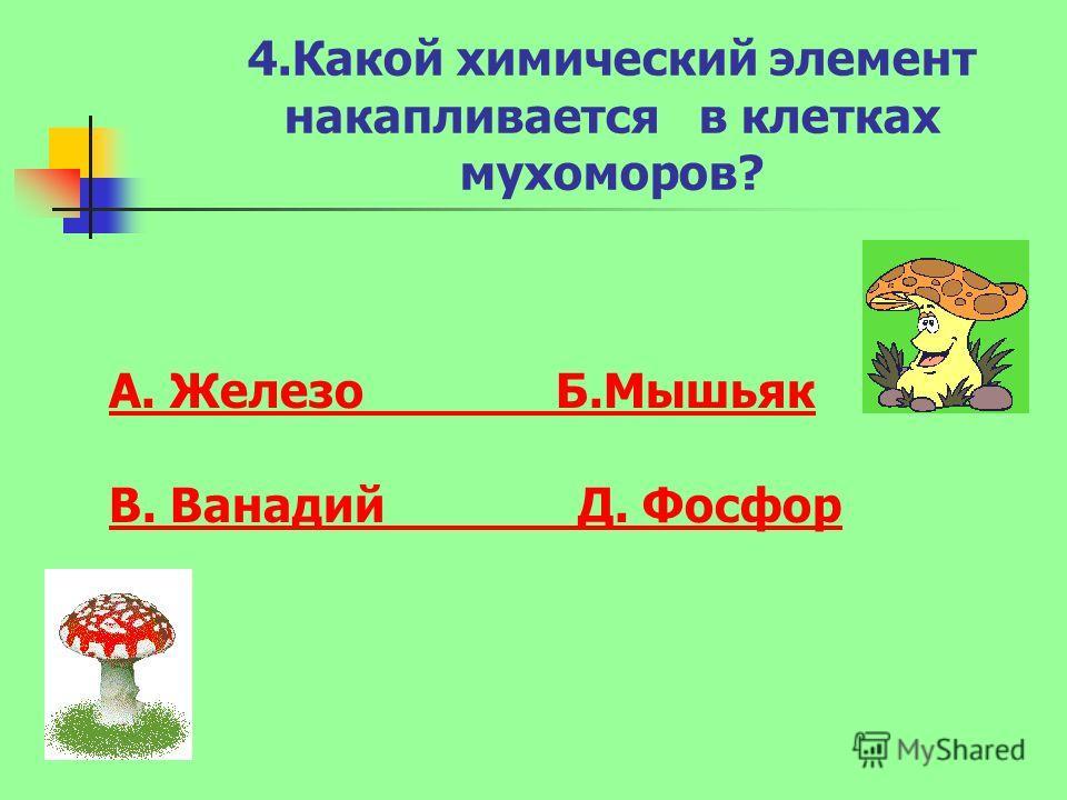 4.Какой химический элемент накапливается в клетках мухоморов? А. Железо Б.Мышьяк В. Ванадий Д. Фосфор