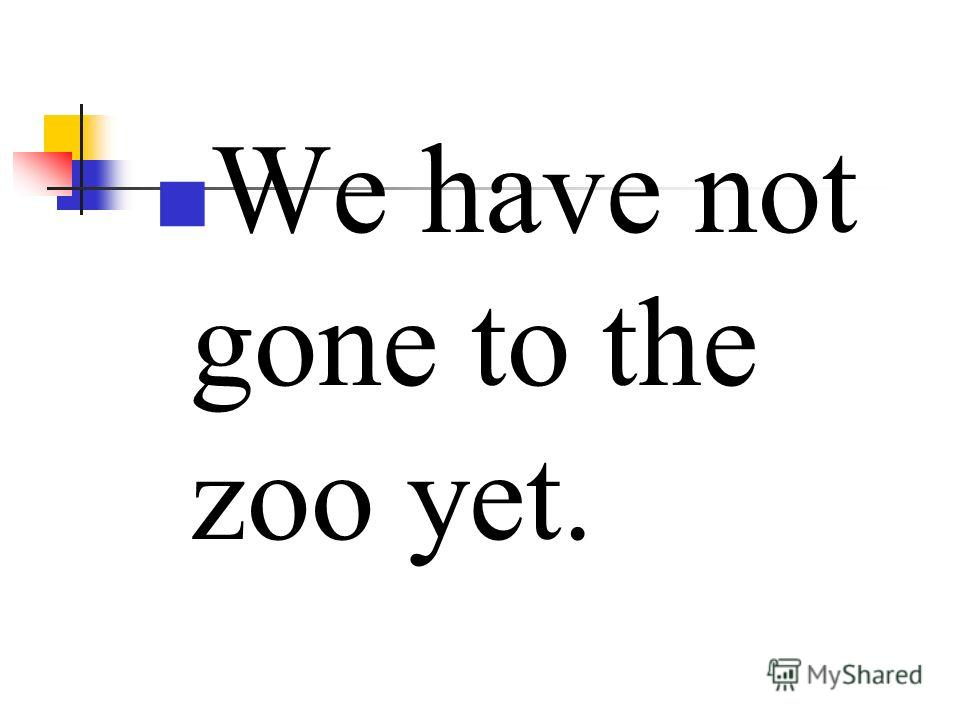 We have not gone to the zoo yet.