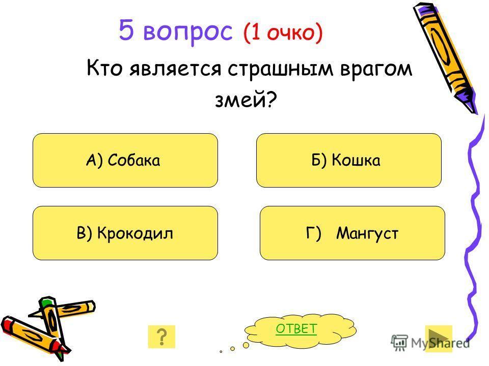 5 вопрос (1 очко) Кто является страшным врагом змей? А) Собака В) Крокодил Б) Кошка Г) Мангуст ОТВЕТ