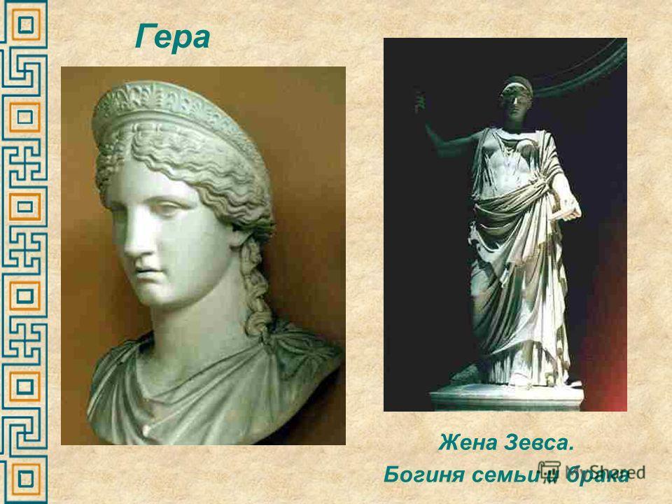 Жена Зевса. Богиня семьи и брака Гера