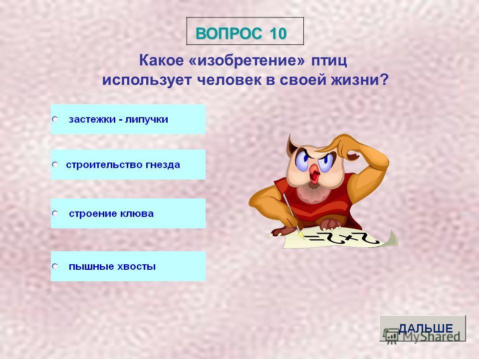 ВОПРОС 9 Что называют линькой у птиц?