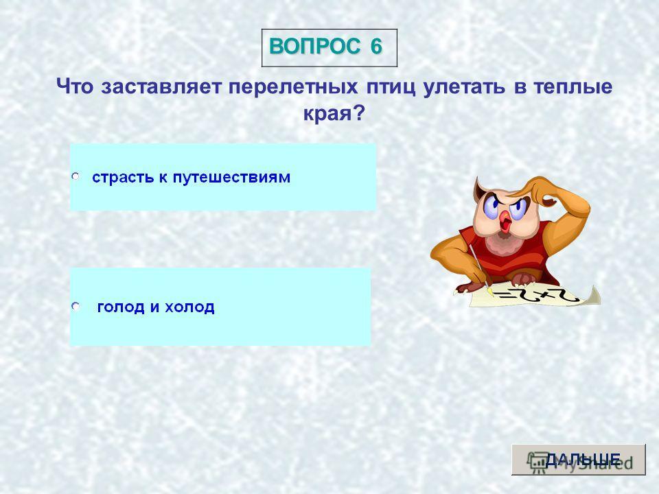 ВОПРОС 5 Выбери лишний элемент множества: