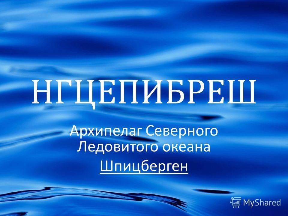 НГЦЕПИБРЕШ Архипелаг Северного Ледовитого океана Шпицберген