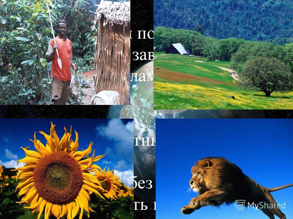 Наука экология показывает нам, Что в мире всё завязано по четырём углам. Растения, животные, земля и человек Не могут друг без друга существовать вовек.