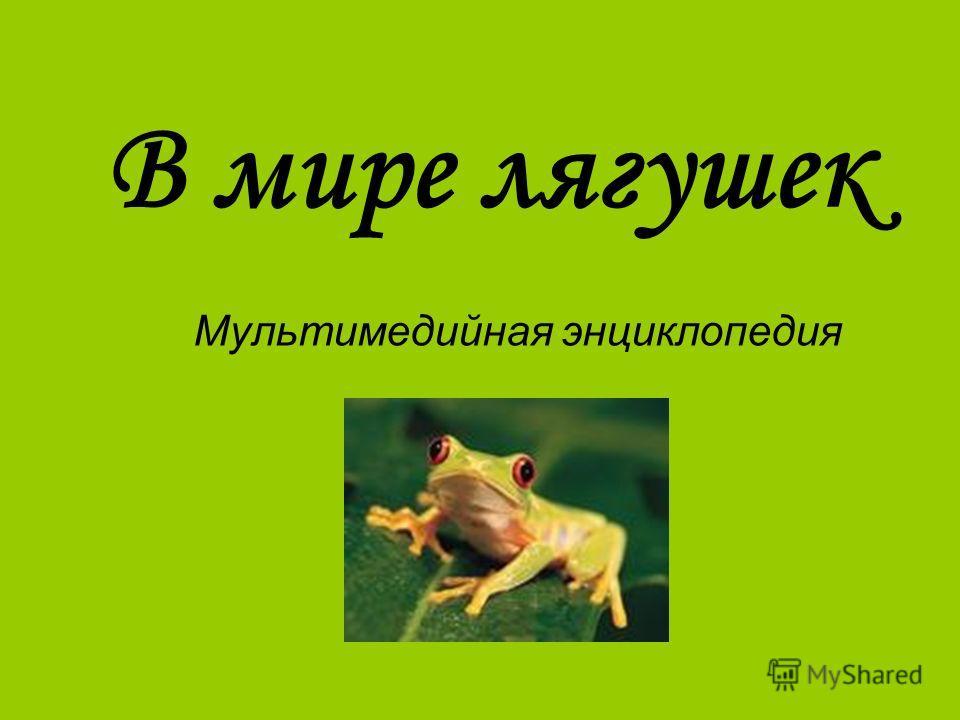 В мире лягушек Мультимедийная энциклопедия