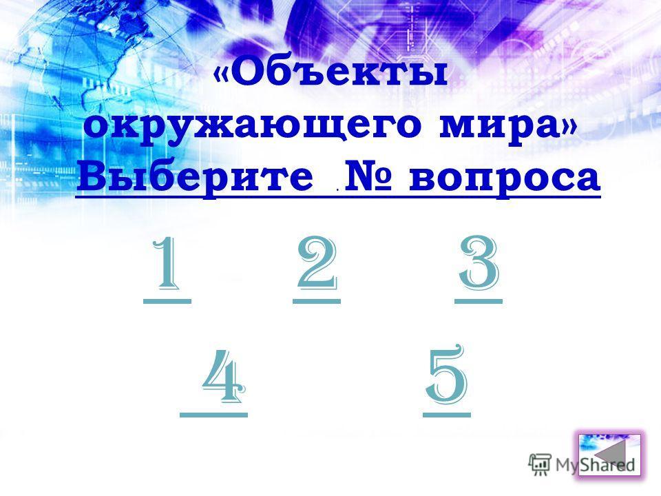 . 123 45 «Объекты окружающего мира» Выберите вопроса