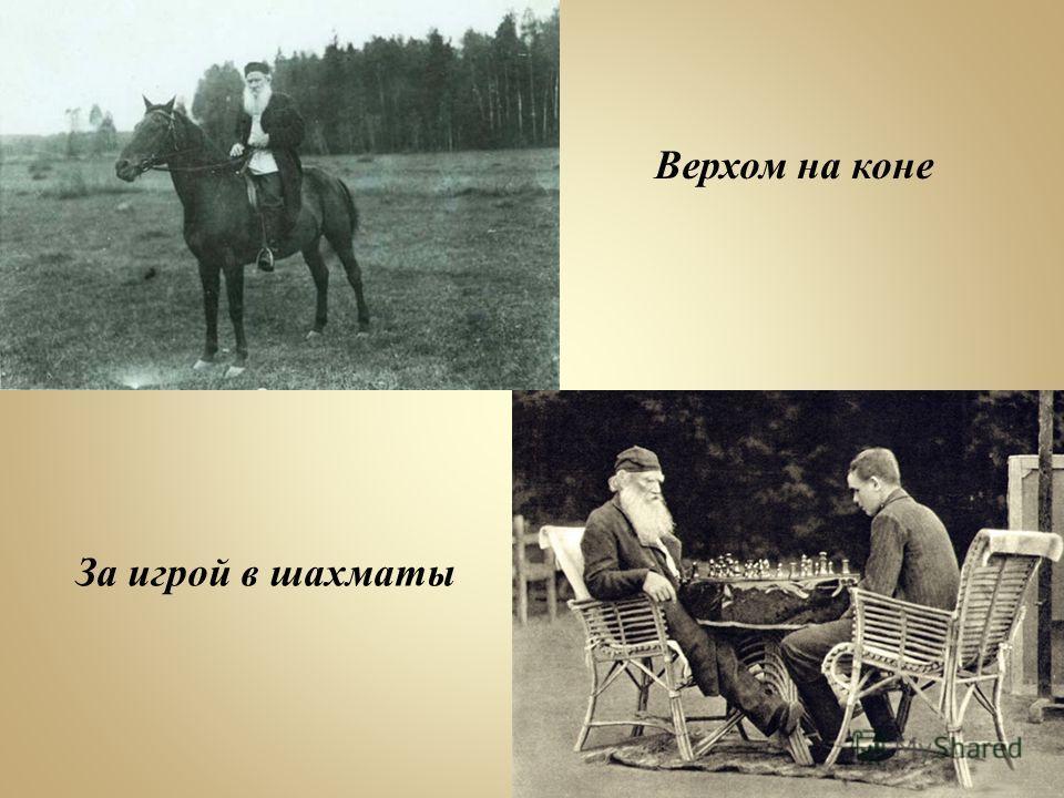 Верхом на коне За игрой в шахматы