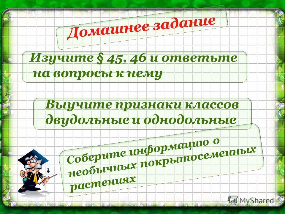 Домашнее задание Изучите § 45, 46 и ответьте на вопросы к нему Выучите признаки классов двудольные и однодольные Соберите информацию о необычных покрытосеменных растениях