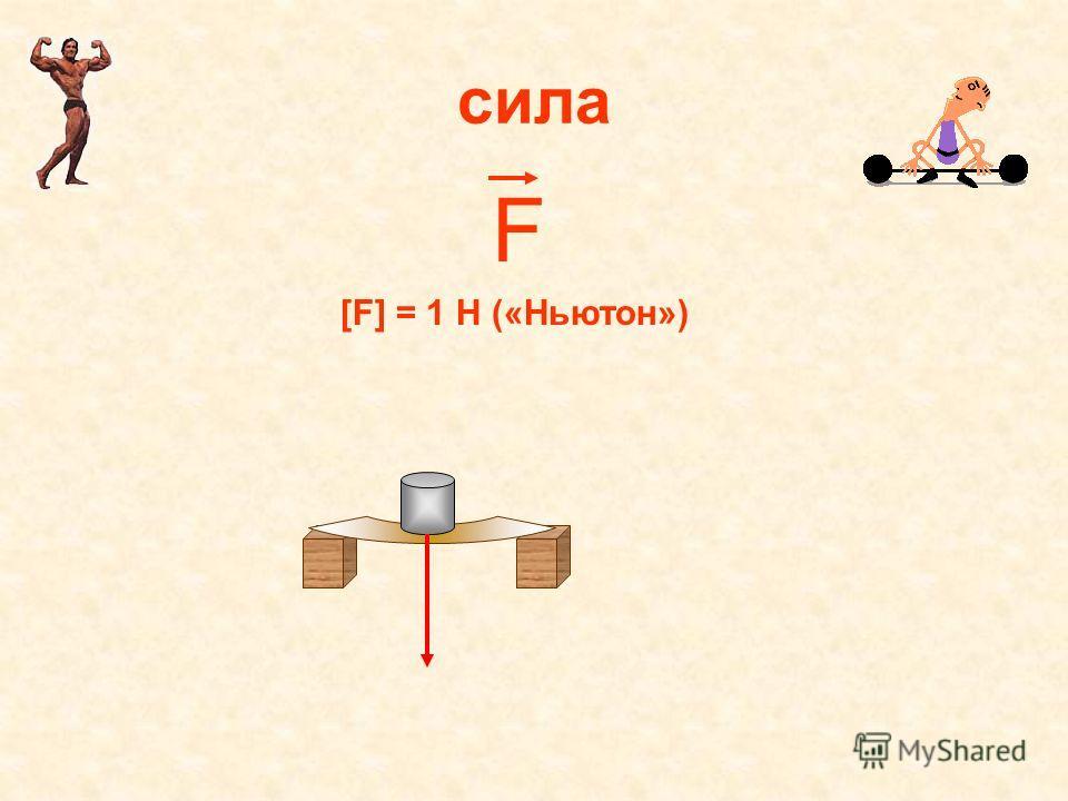 сила F [F] = 1 Н («Ньютон»)