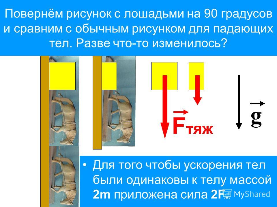 Для того чтобы ускорения тел были одинаковы к телу массой 2m приложена сила 2F. Повернём рисунок с лошадьми на 90 градусов и сравним с обычным рисунком для падающих тел. Разве что-то изменилось? F тяж g