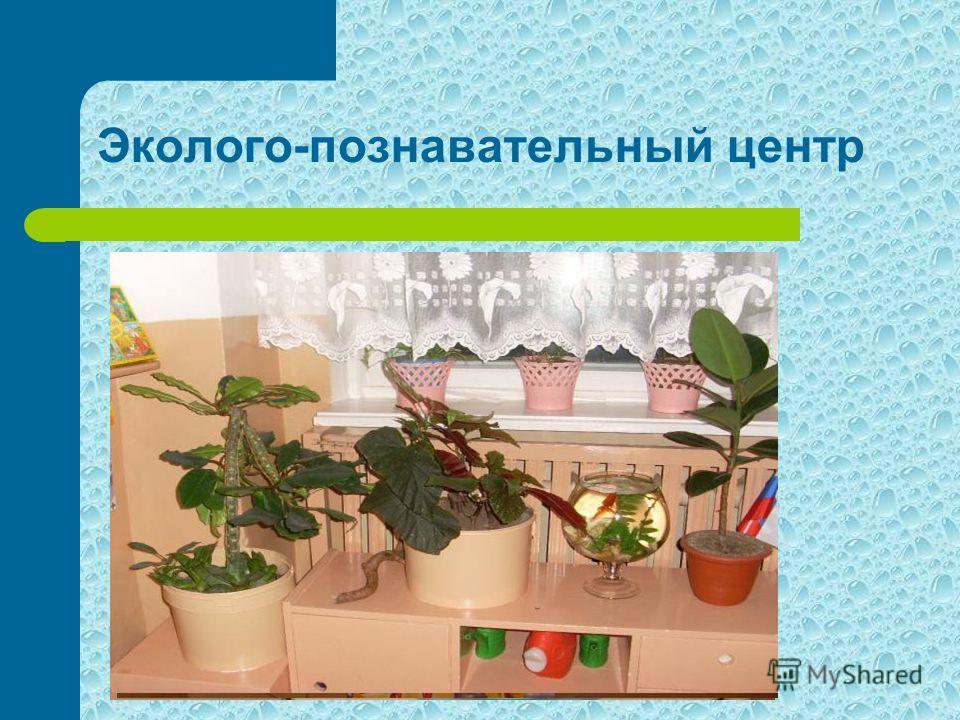 Эколого-познавательный центр