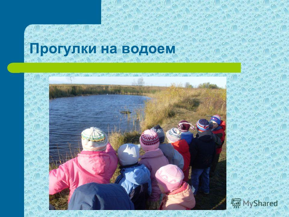 Прогулки на водоем