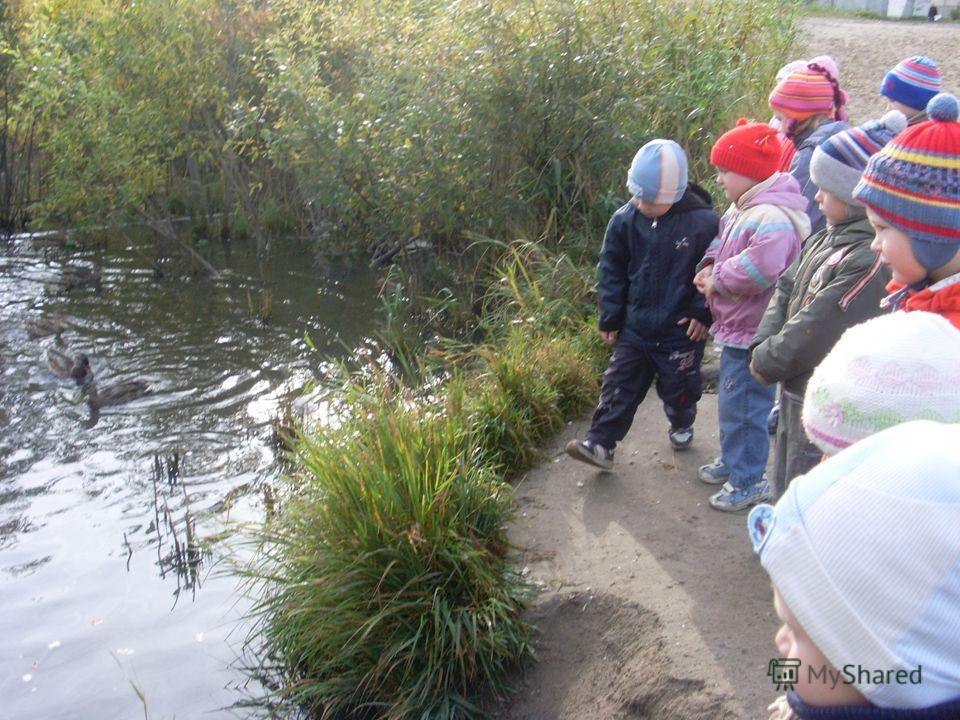 знакомство с обитателями водоема