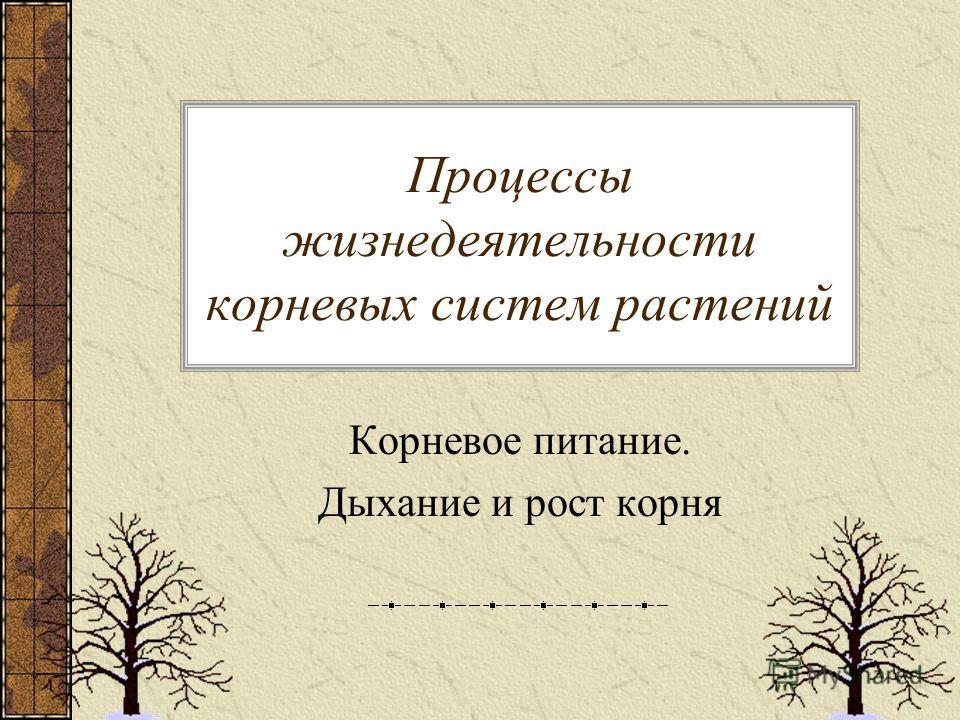 Процессы жизнедеятельности корневых систем растений Корневое питание. Дыхание и рост корня