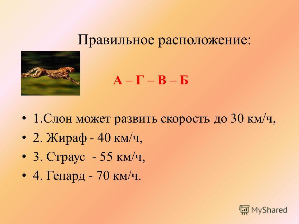 Правильное расположение: А – Г – В – Б 1.Слон может развить скорость до 30 км/ч, 2. Жираф - 40 км/ч, 3. Страус - 55 км/ч, 4. Гепард - 70 км/ч.