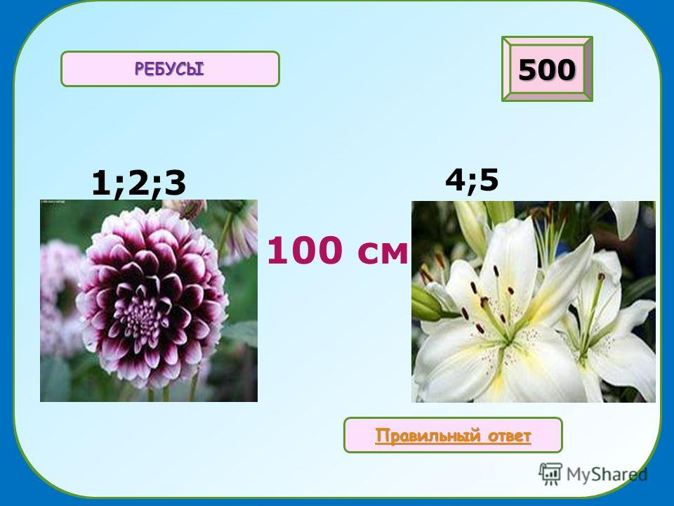 100 см РЕБУСЫ 500 Правильный ответ Правильный ответ 1;2;3 4;5
