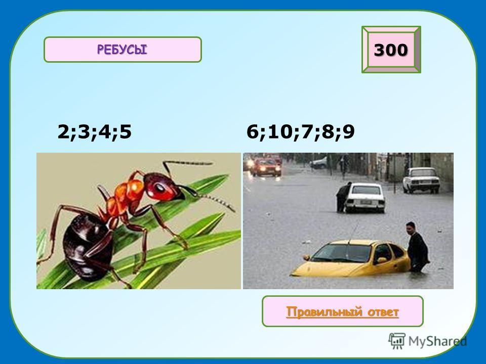 РЕБУСЫ 300 Правильный ответ Правильный ответ 2;3;4;56;10;7;8;9