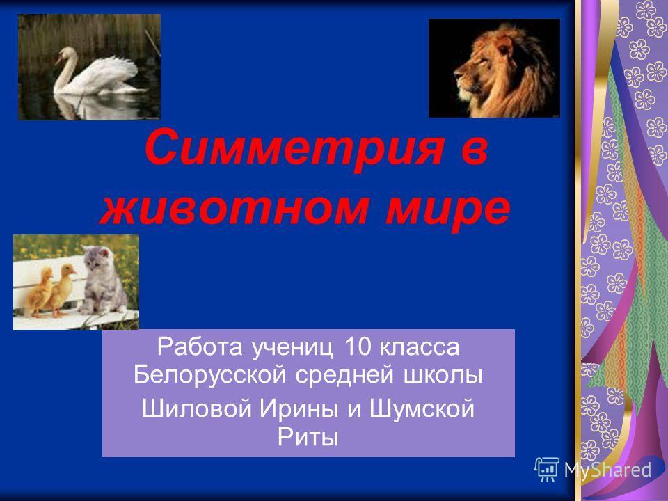 Симметрия в животном мире Работа учениц 10 класса Белорусской средней школы Шиловой Ирины и Шумской Риты