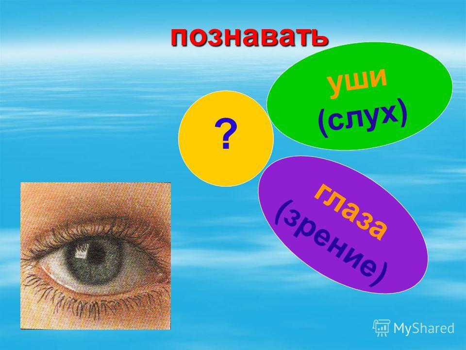 познавать ? уши (слух) глаза (зрение)