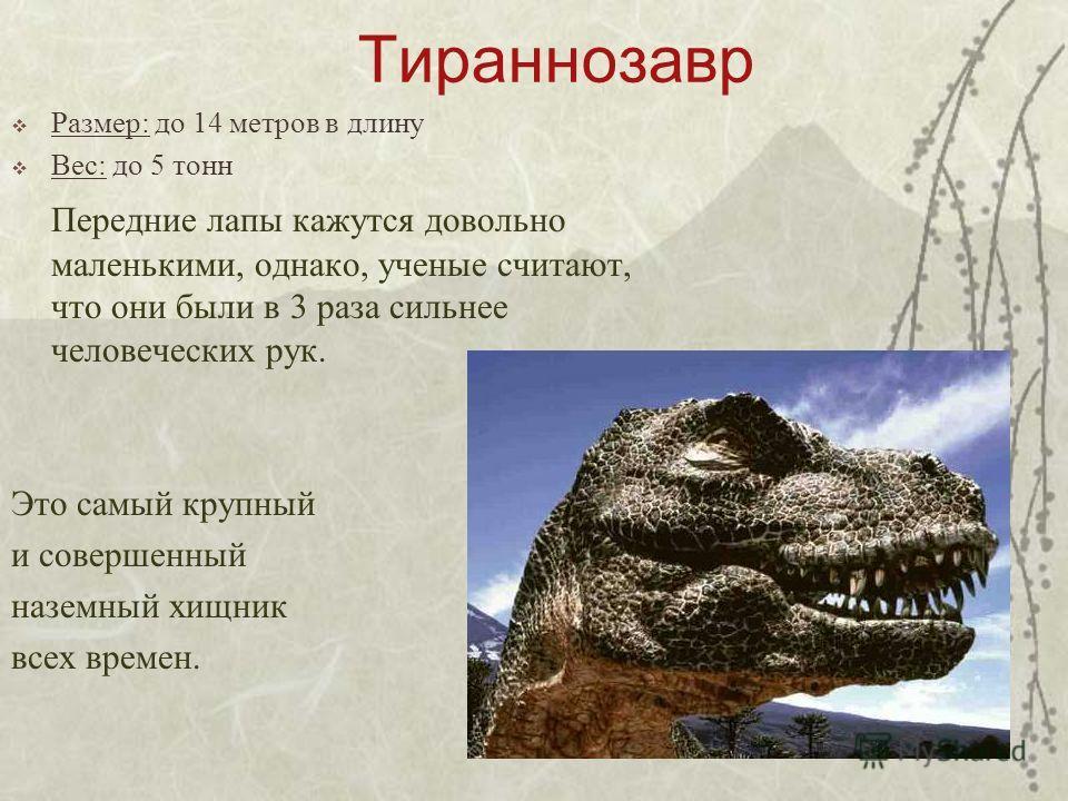 Тираннозавр Размер: до 14 метров в длину Вес: до 5 тонн Передние лапы кажутся довольно маленькими, однако, ученые считают, что они были в 3 раза сильнее человеческих рук. Это самый крупный и совершенный наземный хищник всех времен.