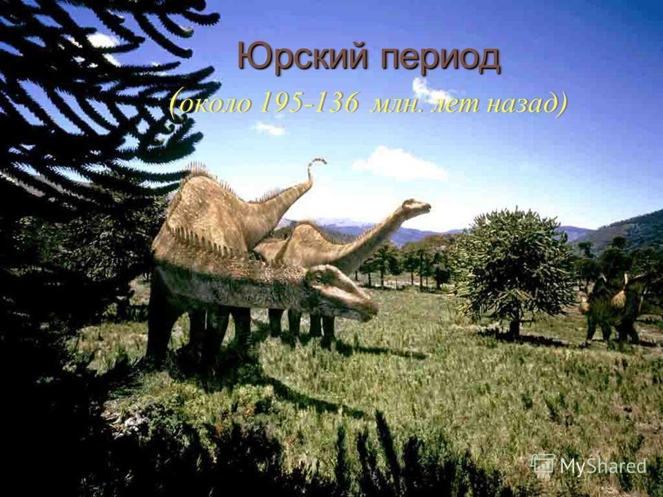 Юрский период Юрский период ( около 195-136 млн. лет назад)