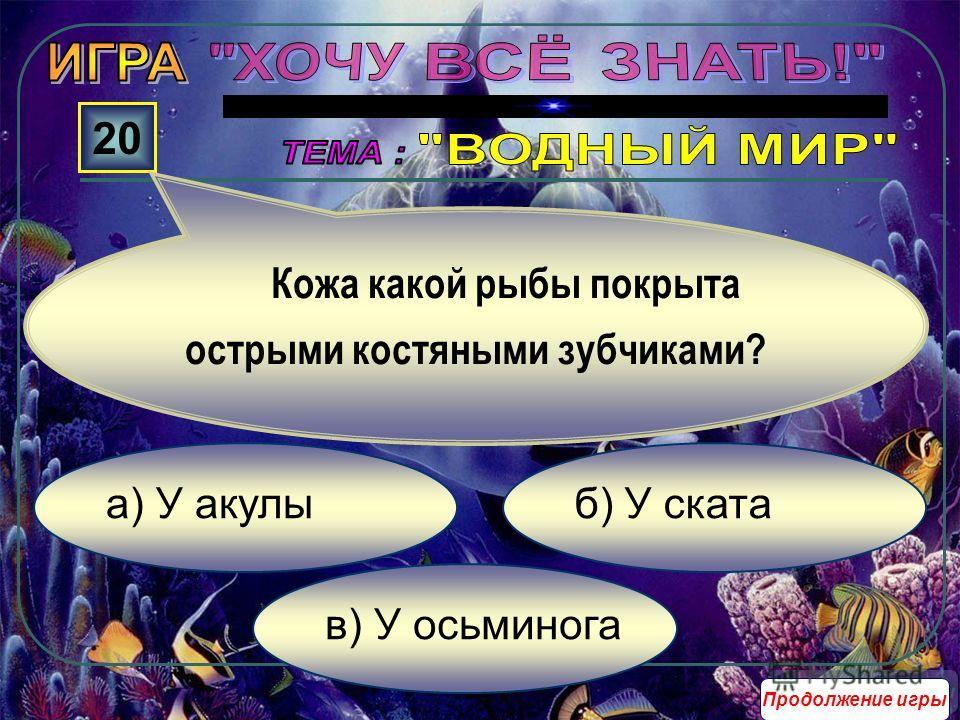 в) У офиурии б) У морской звезды а) У голотурии 10 У кого рот расположен на нижней части тела и соединён прямо с желудком? Продолжение игры