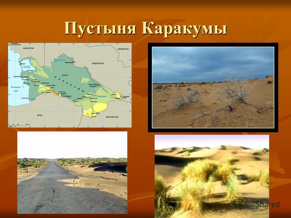 Пустыни бывают: каменистые; каменистые; песчаные; песчаные; глинистые; глинистые; солончаковые. солончаковые.