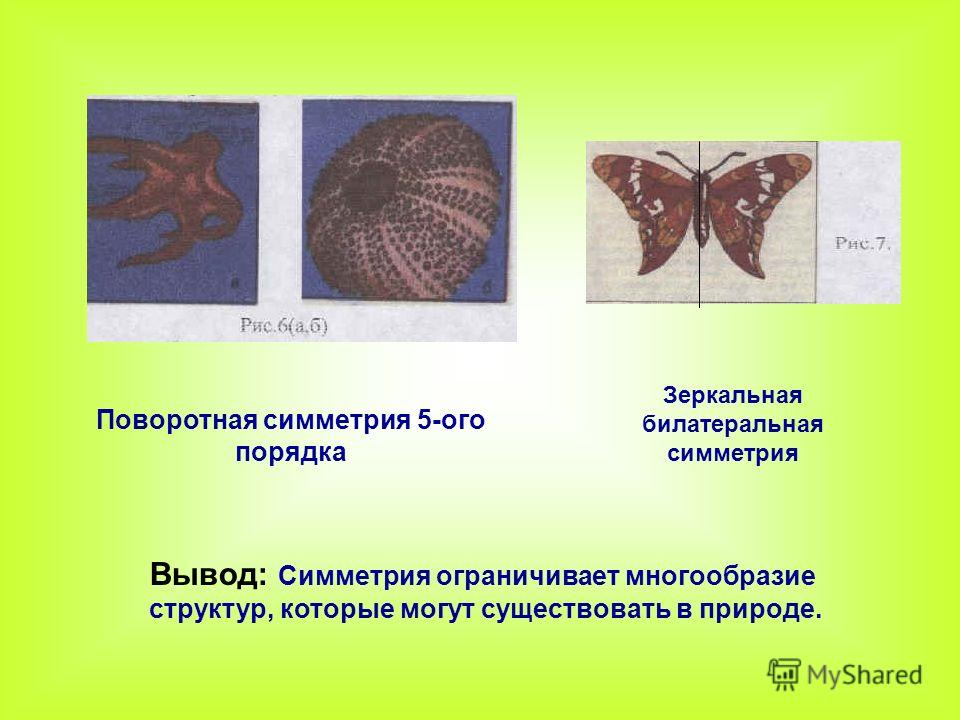 Поворотная симметрия 5-ого порядка Зеркальная билатеральная симметрия Вывод: Симметрия ограничивает многообразие структур, которые могут существовать в природе.