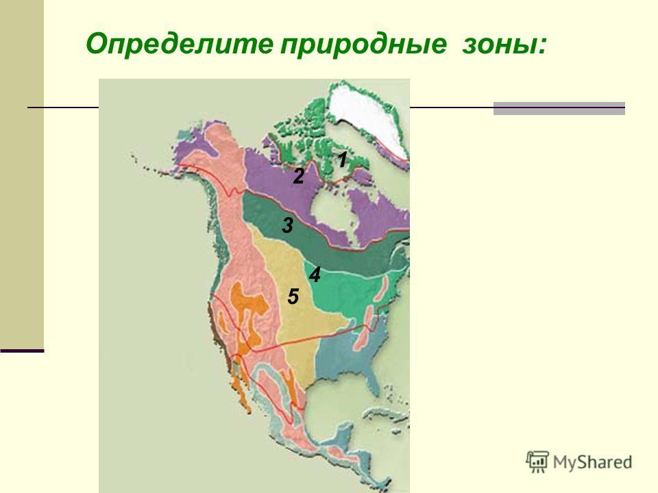 Определите природные зоны: Степи Тайга Тундра Арктические пустыни Смешанные и широколиственные леса 1 2 3 4 5