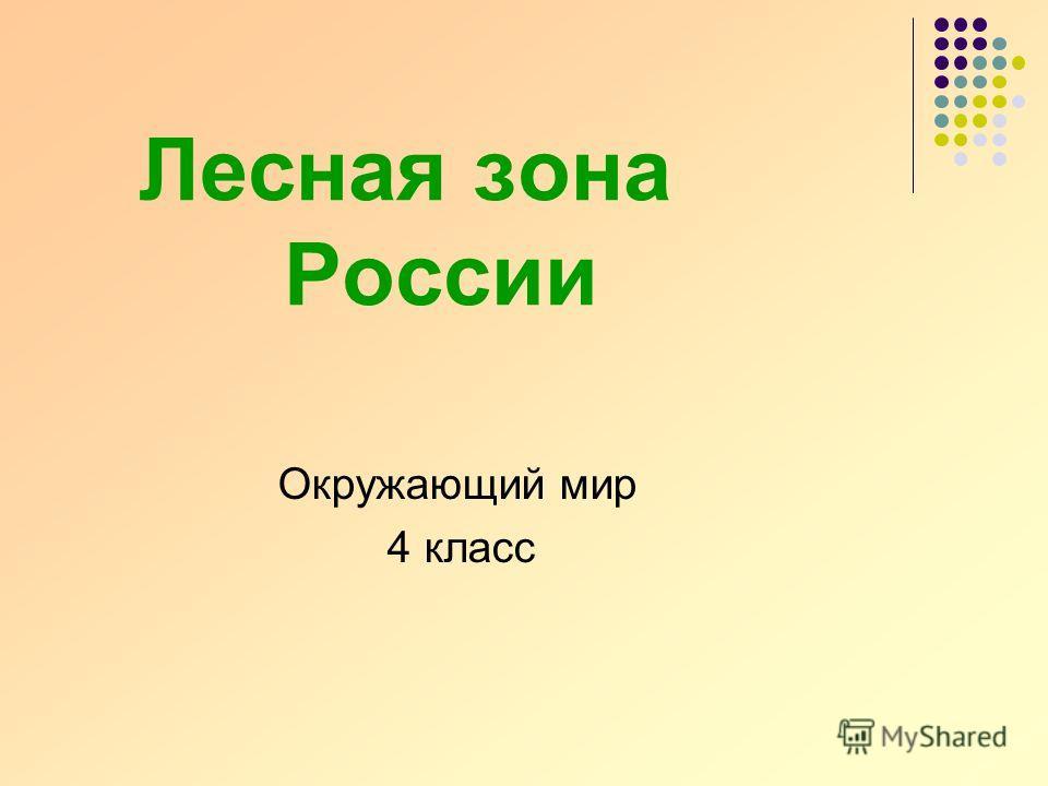 Лесная зона России Окружающий мир 4 класс