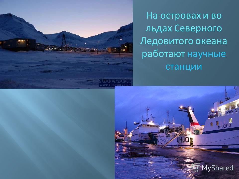 На островах и во льдах Северного Ледовитого океана работают научные станции