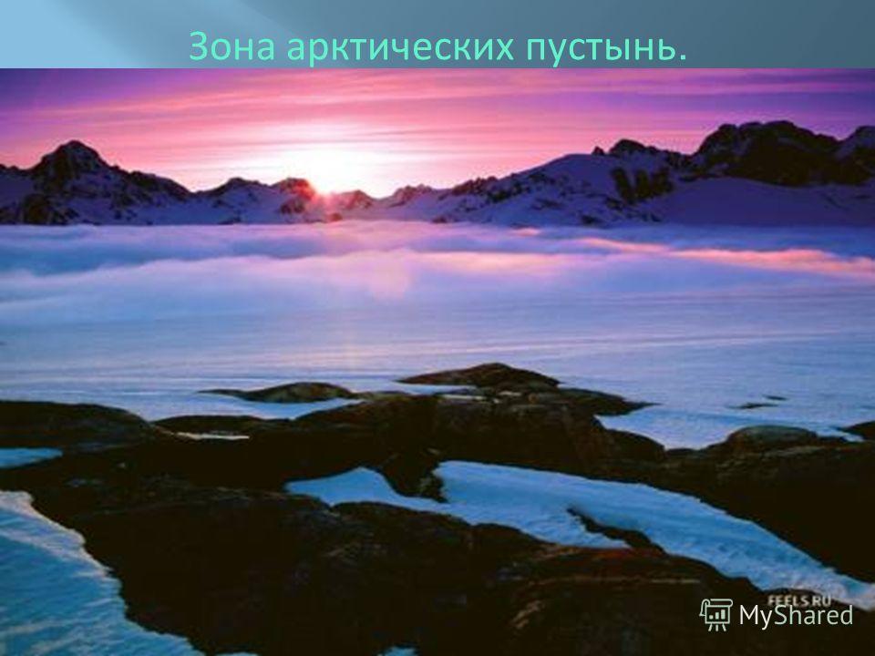 Зона арктических пустынь.