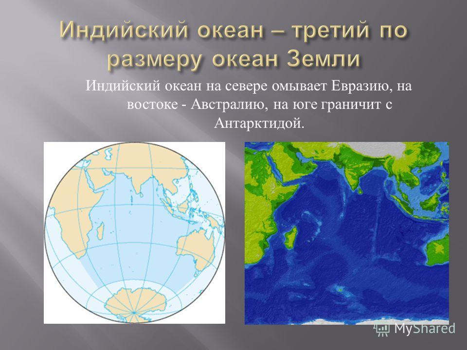 Индийский океан на севере омывает Евразию, на востоке - Австралию, на юге граничит с Антарктидой.