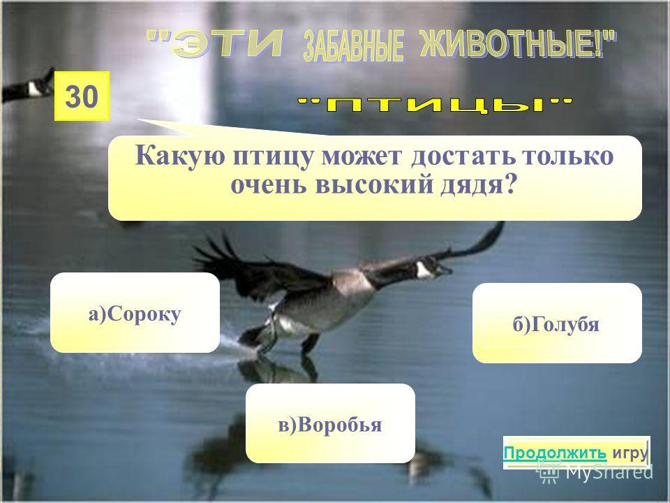20 У какой птицы хвост рожками? а)У сойки в)У клеста б)У ласточки Продолжить игру