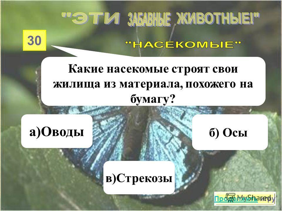 20 Хищное насекомое, которое оказывает огромную пользу растениям, а когда его трогаешь, выделяет желтое «молочко», это… а) Комар в)Божья коровка б) Слепень Продолжить игру