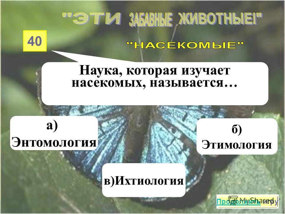 30 Какие насекомые строят свои жилища из материала, похожего на бумагу? а)Оводы в)Стрекозы б) Осы Продолжить игру