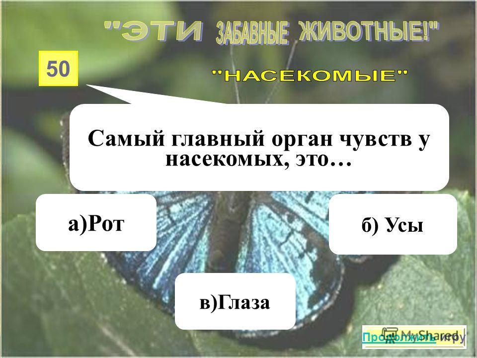 40 Наука, которая изучает насекомых, называется… а) Энтомология в)Ихтиология б) Этимология Продолжить игру