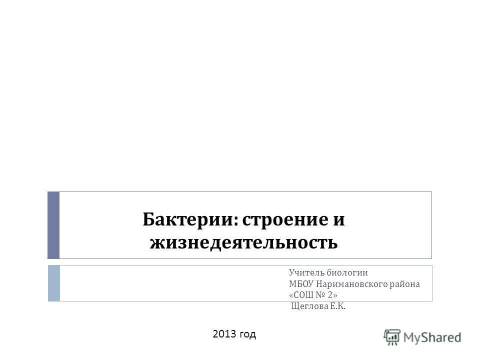 Бактерии : строение и жизнедеятельность Учитель биологии МБОУ Наримановского района « СОШ 2» Щеглова Е. К. 2013 год