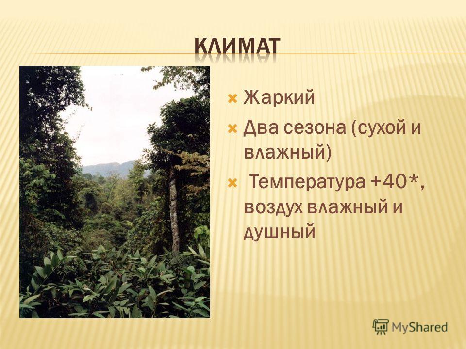 Жаркий Два сезона (сухой и влажный) Температура +40*, воздух влажный и душный