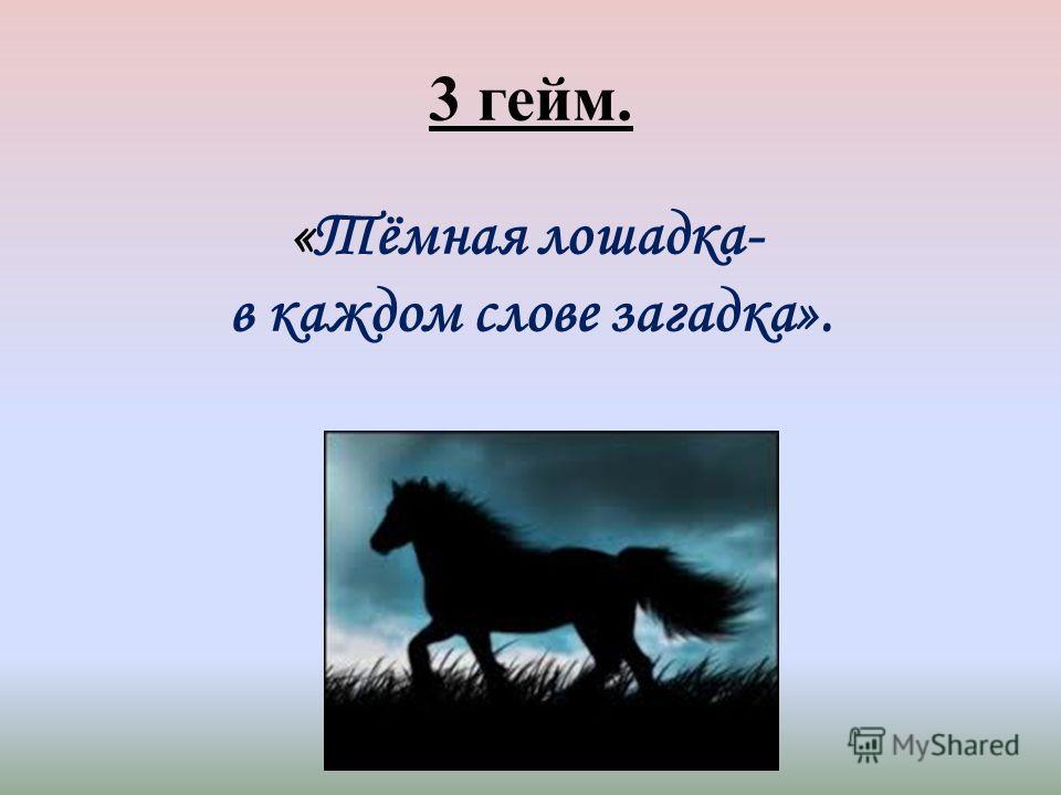 3 гейм. «Тёмная лошадка- в каждом слове загадка».