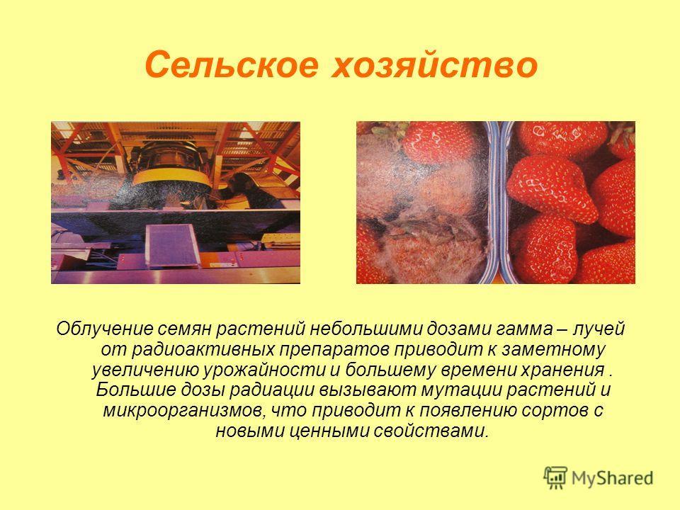Что нужно делать при аварии на радиационно опасных объектах Освободить от продуктов холодильник Вынести ско- ропортящиеся продукты и мусор Выключить газ, электричество, погасить огонь в печи Взять необходимые вещи Документы и продукты питания Надеть