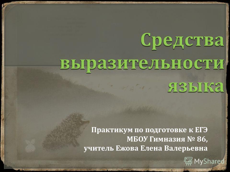 Практикум по подготовке к ЕГЭ МБОУ Гимназия 86, учитель Ежова Елена Валерьевна