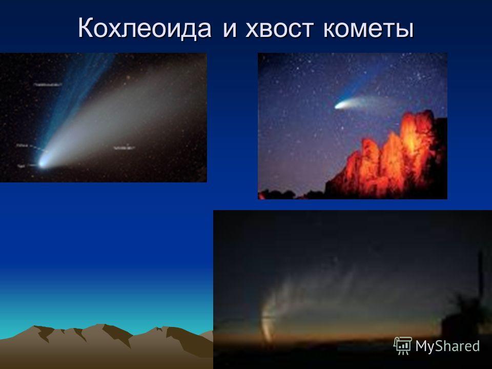 Кохлеоида и хвост кометы