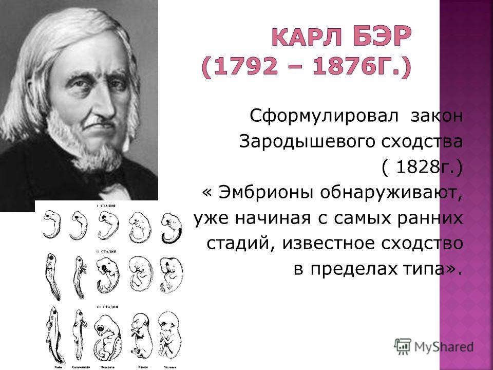 Сформулировал закон Зародышевого сходства ( 1828г.) « Эмбрионы обнаруживают, уже начиная с самых ранних стадий, известное сходство в пределах типа».