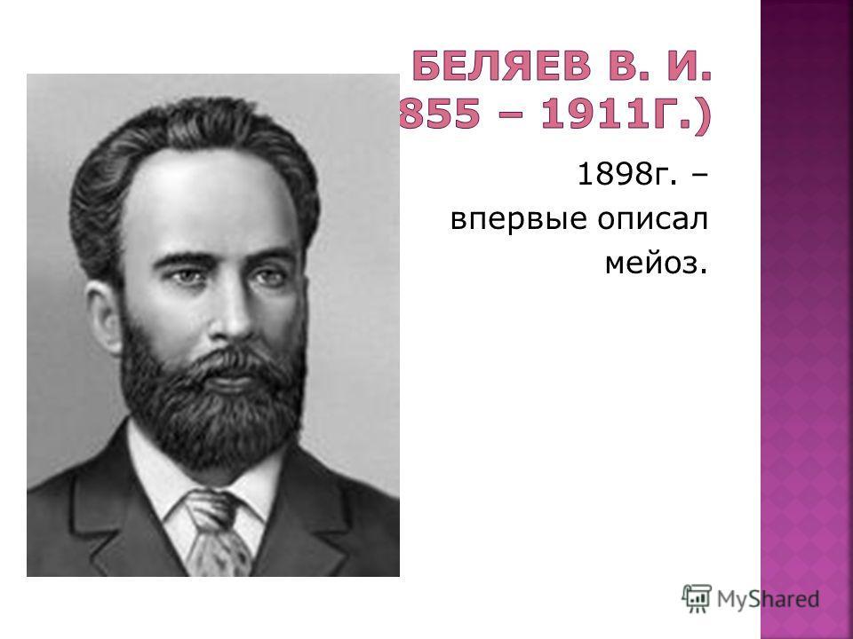 1898г. – впервые описал мейоз.