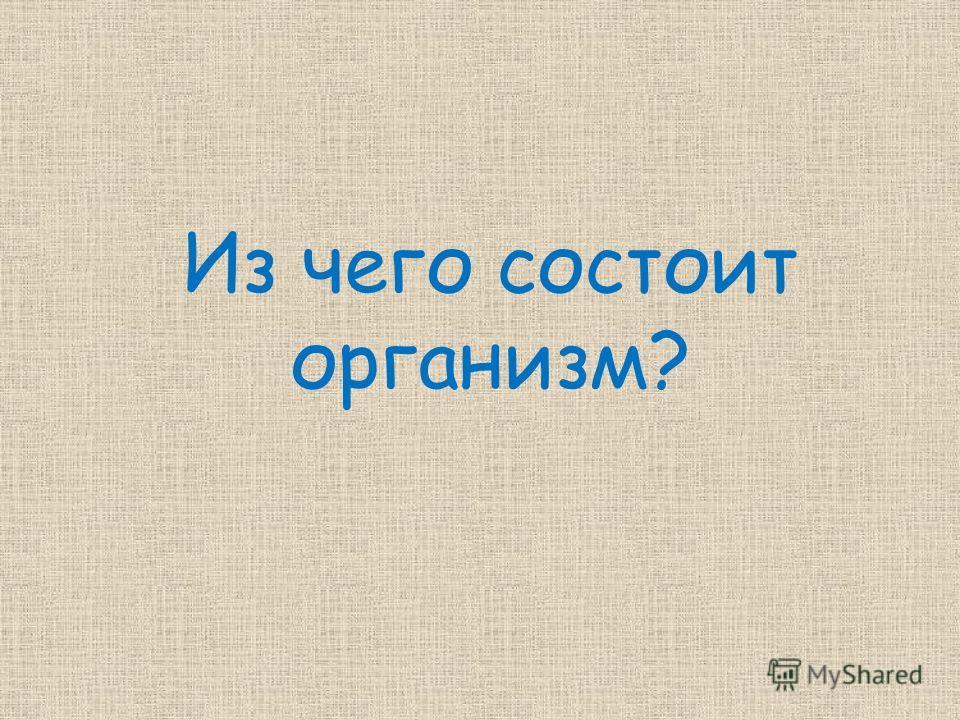 Из чего состоит организм?